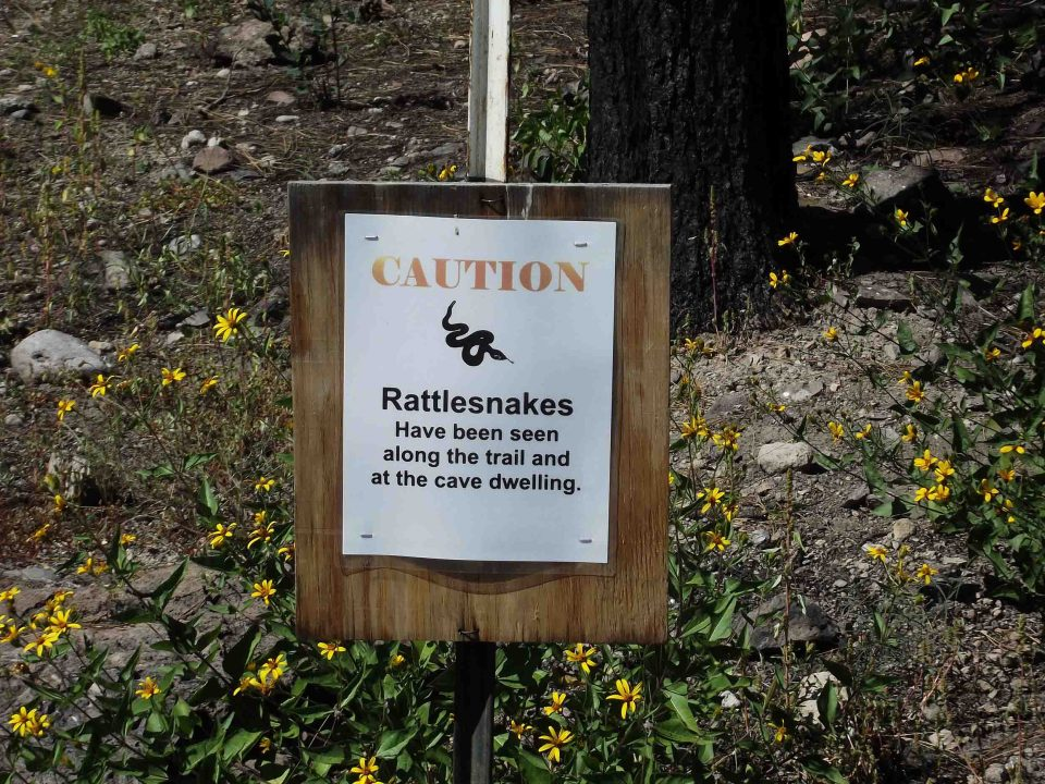 Sign warning about snakes