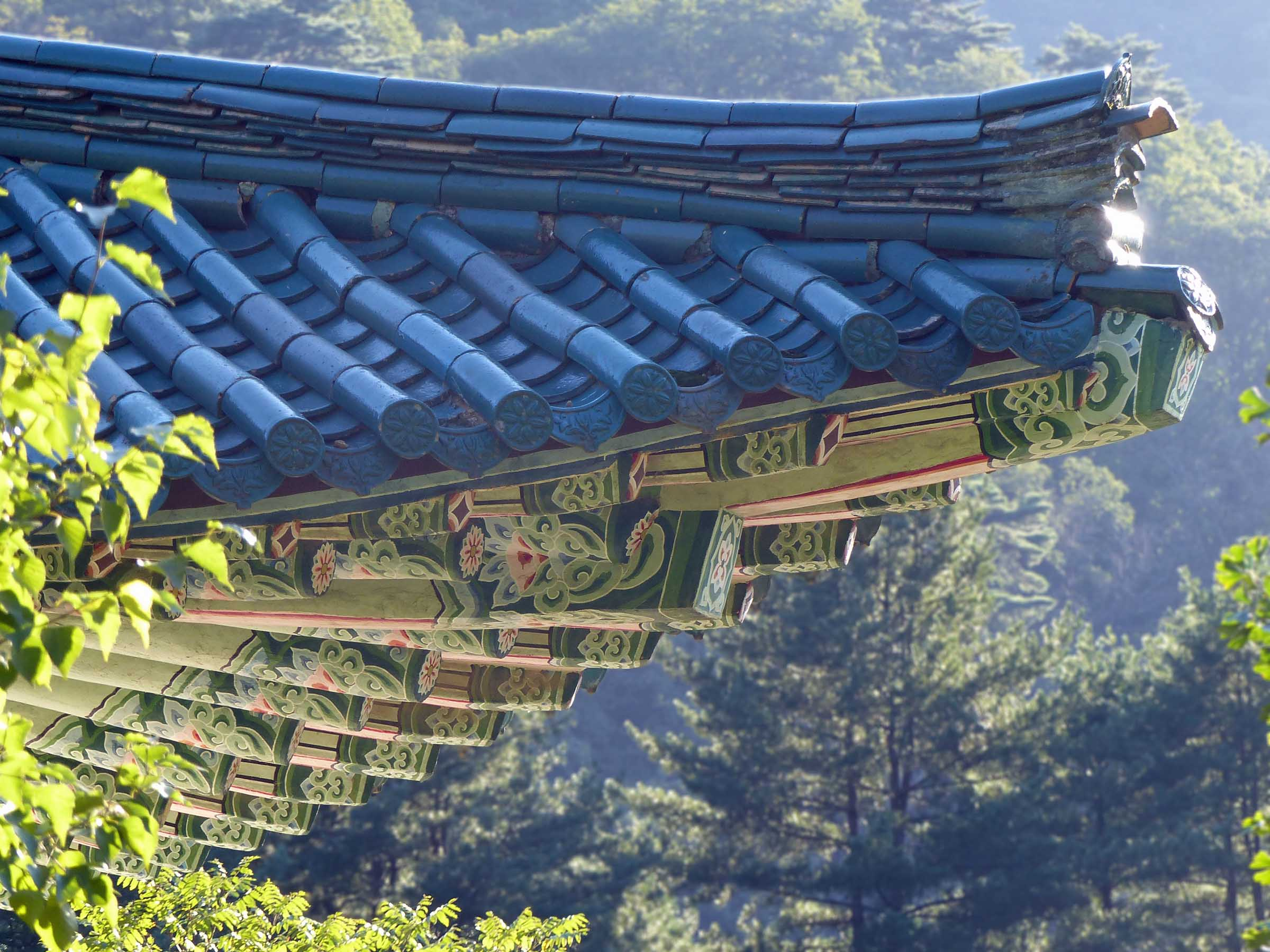 Temple roof among trees