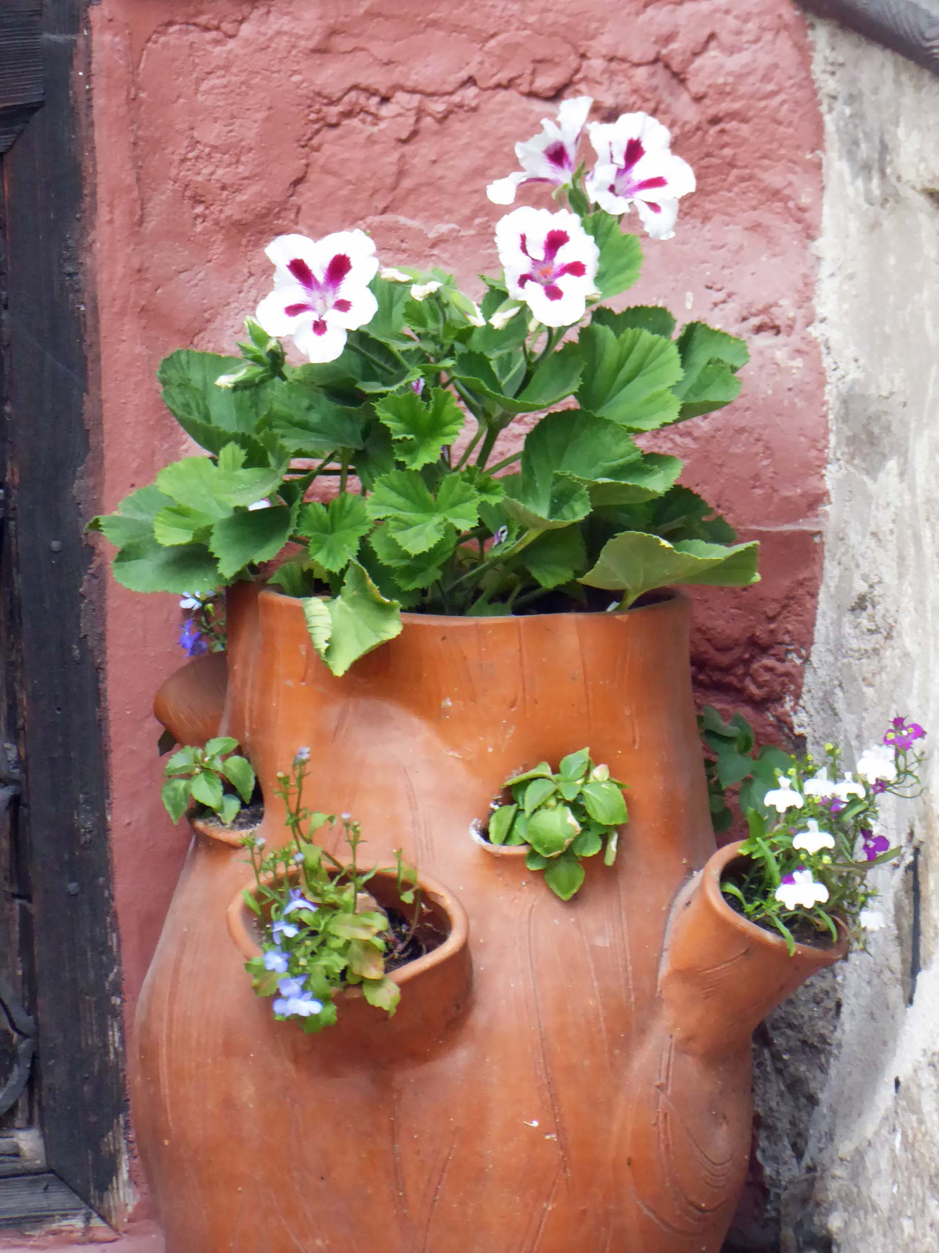 Terracotta planter with pink and white flowers