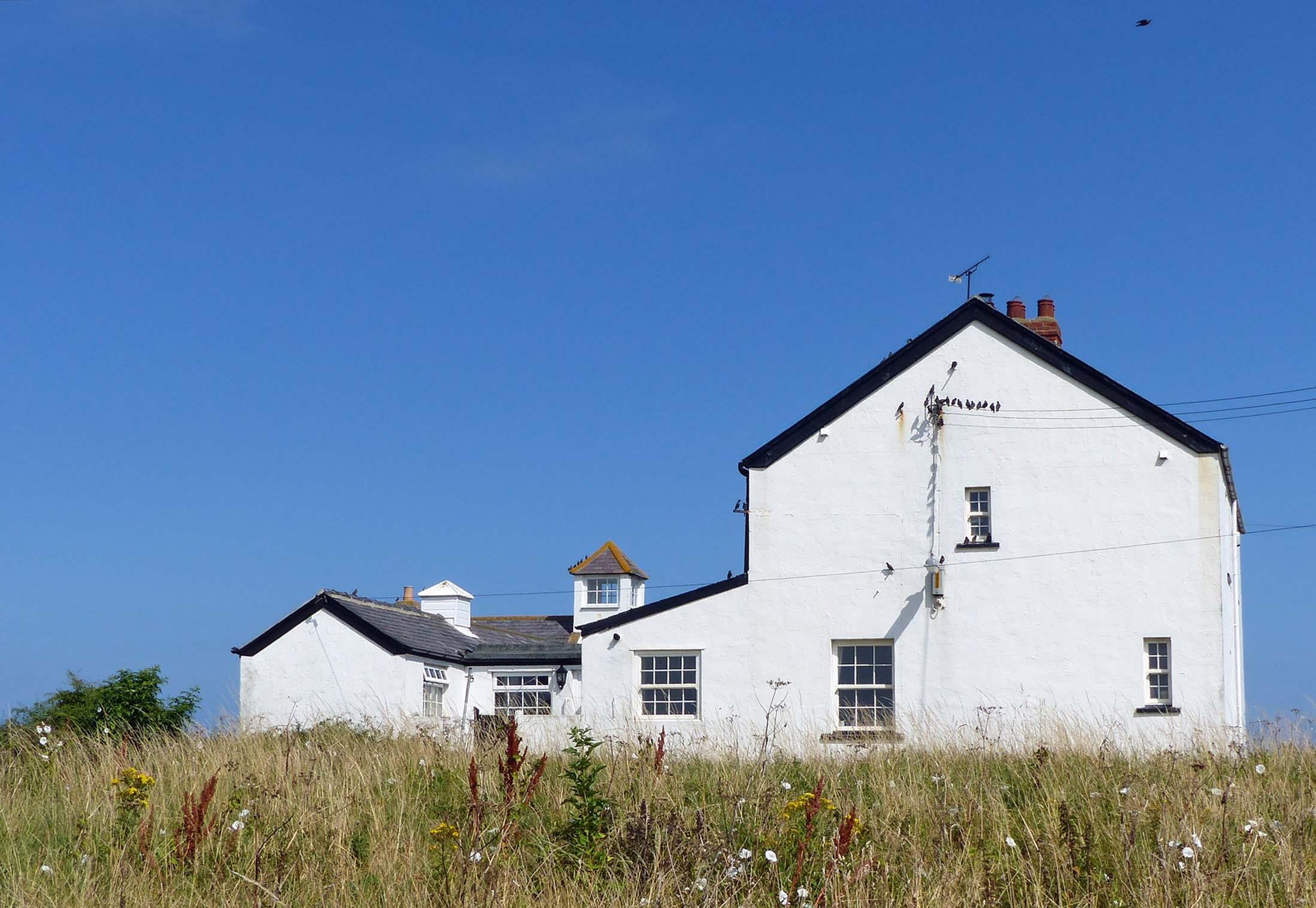White buildings in overgrown field
