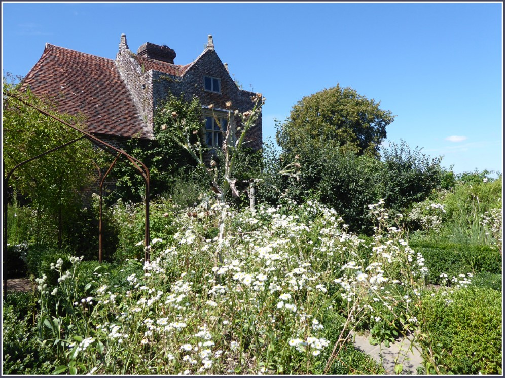 White flowers in front of an old house