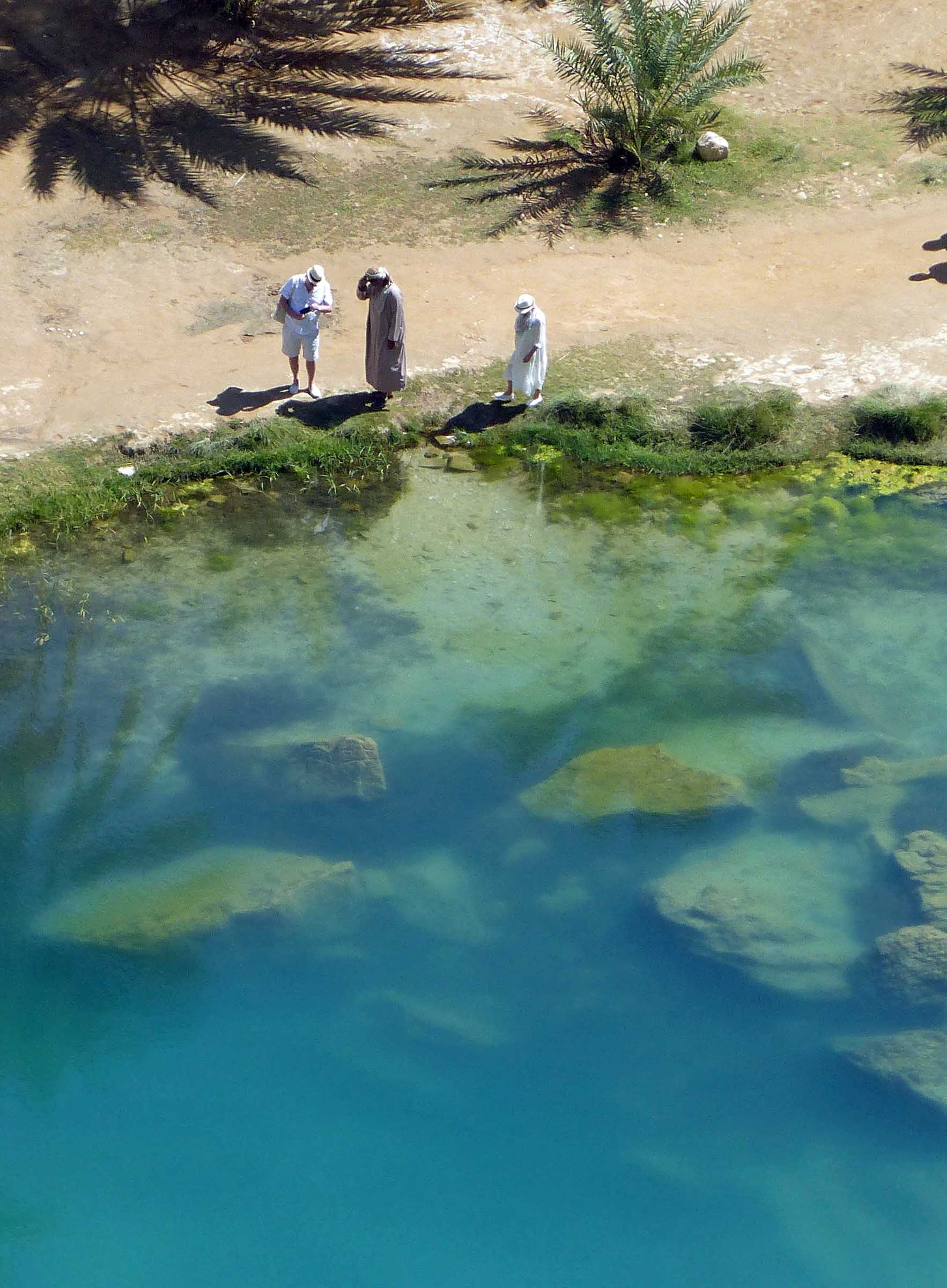 Green pool from above with three men talking on the banks