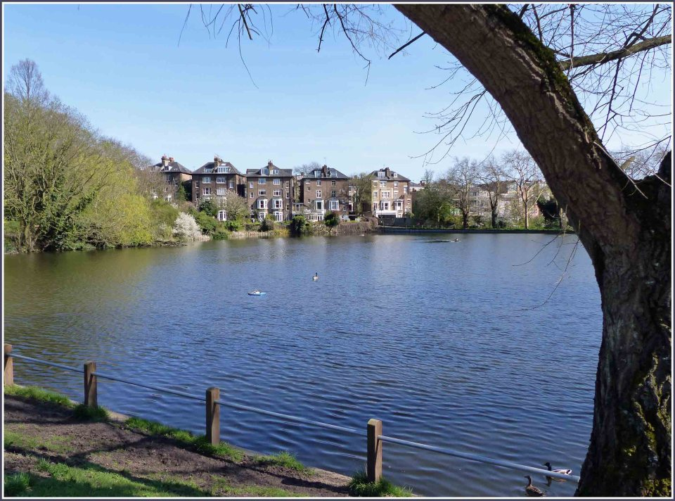 Pond with houses beyond