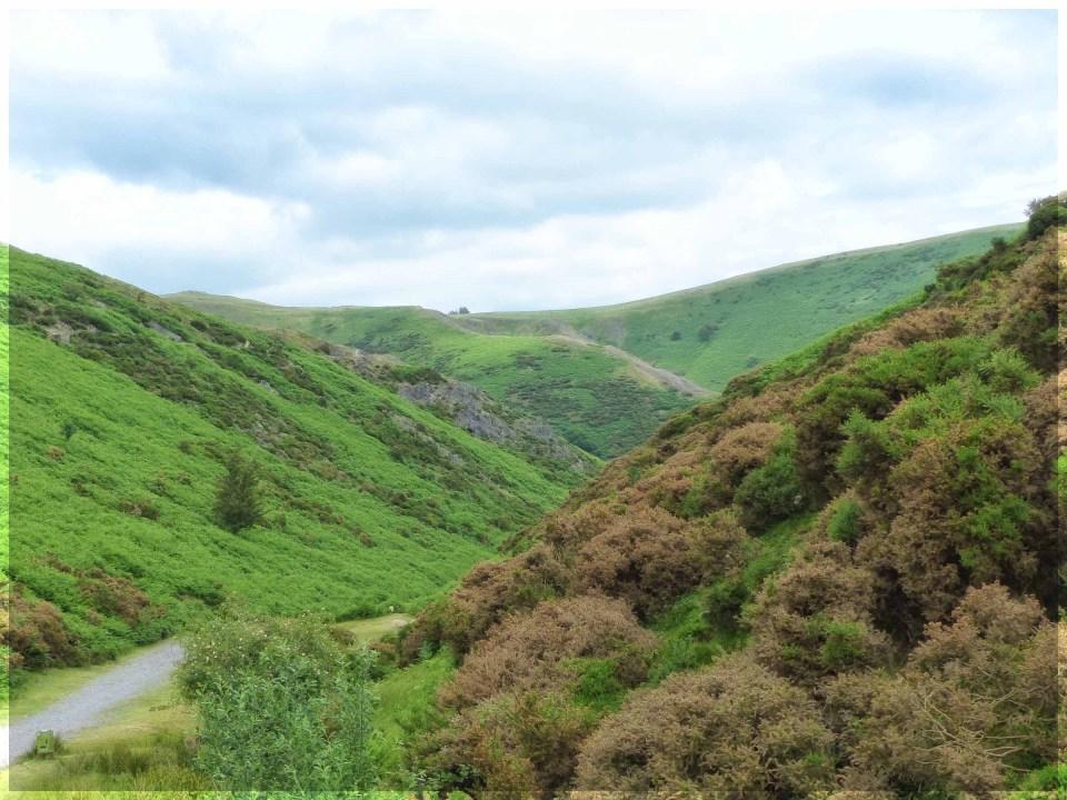 Path through hilly landscape