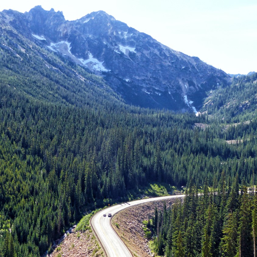 Road through mountains covered with pines