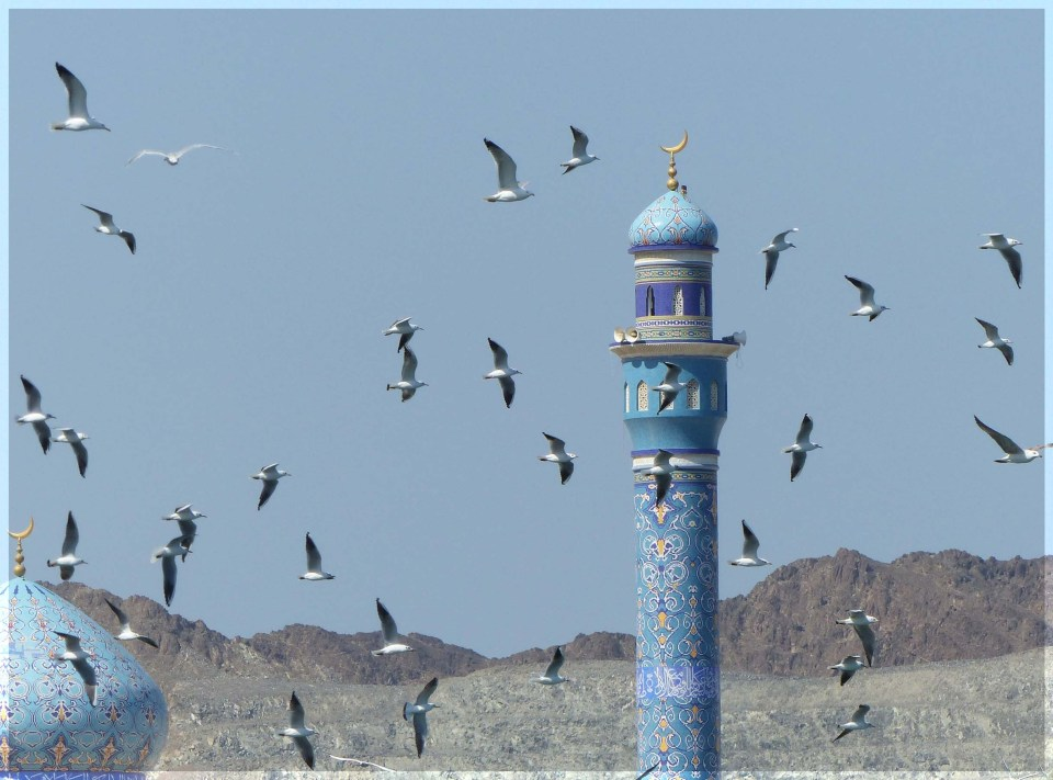 Blue tiled minaret with mountain backdrop and gulls overhead