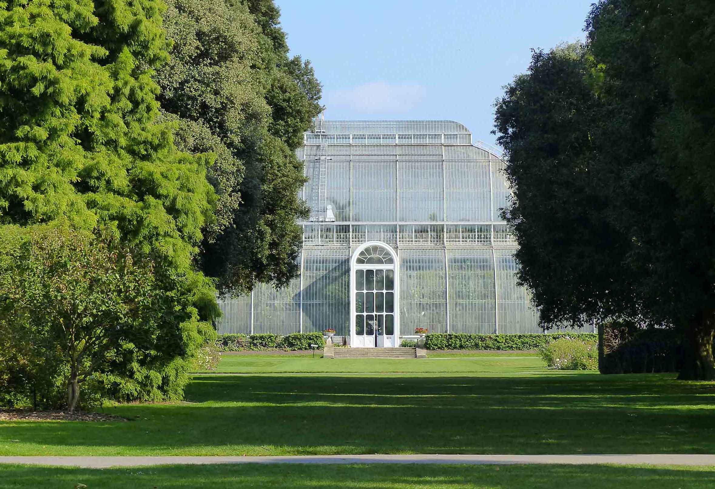 Large conservatory among trees