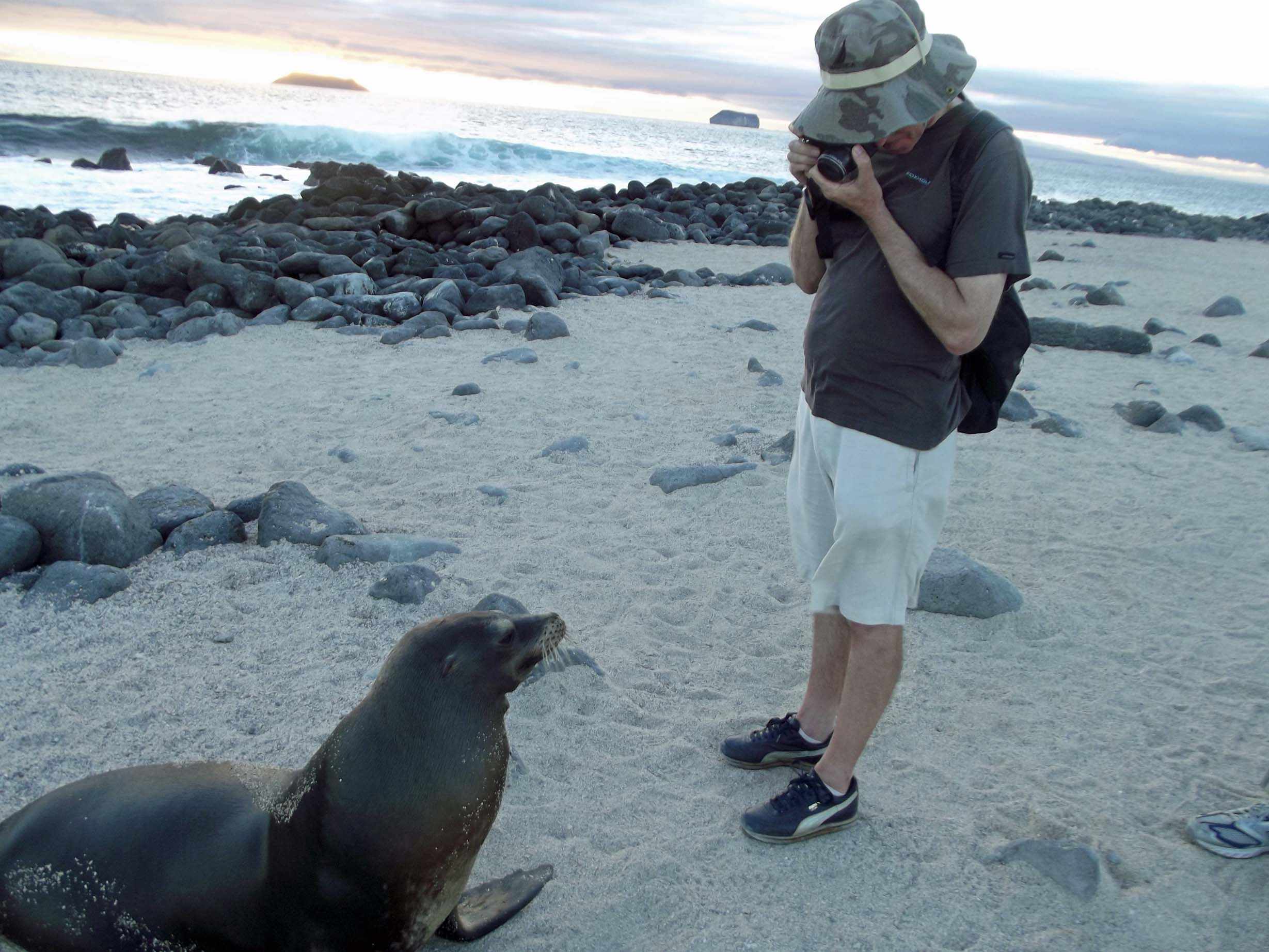Man in shorts photographing a seal at his feet