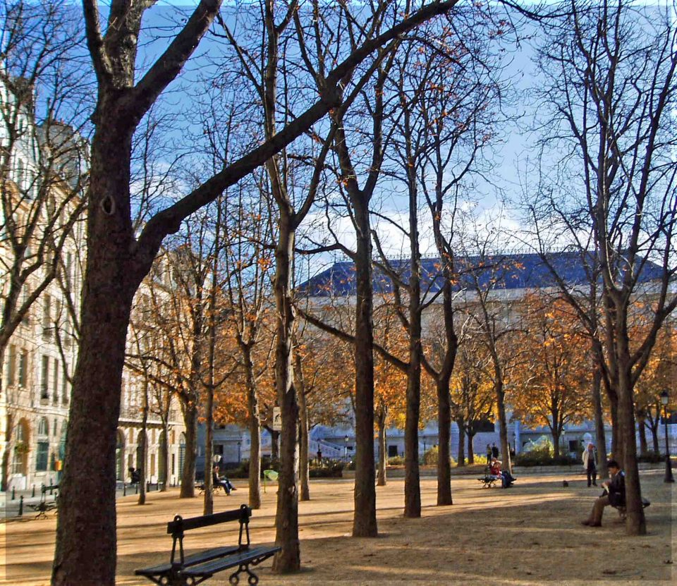 Open square with autumn trees