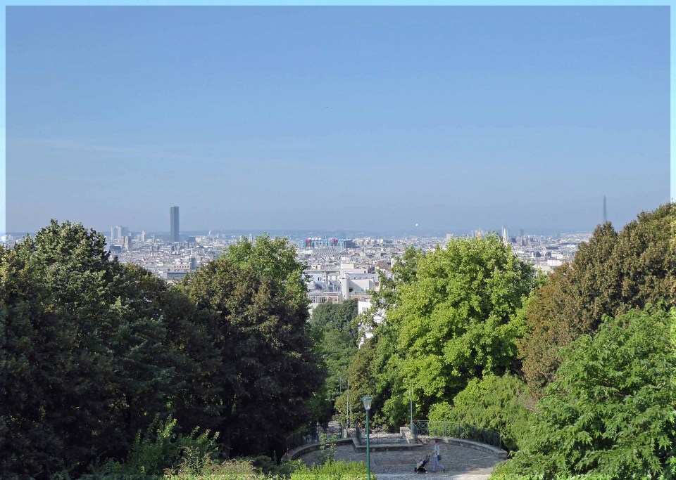 Cityscape seen over the top of trees