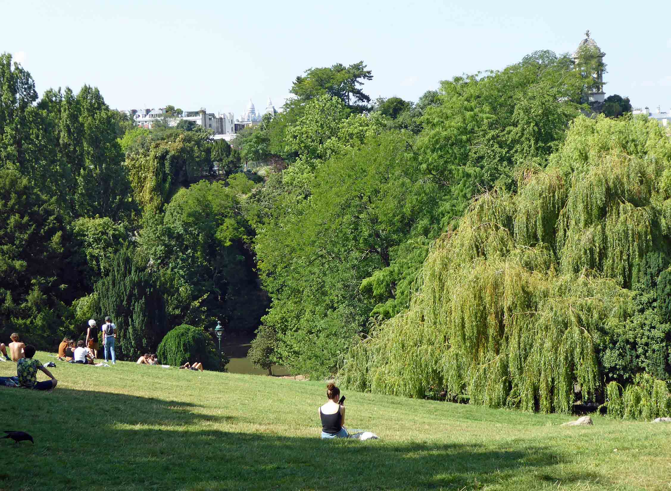 People sitting on grass with trees beyond