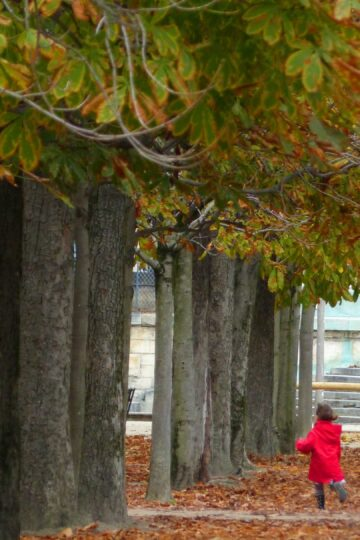Path with autumn trees and small girl in red coat