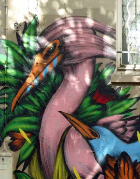 Colourful painting of two birds on a wall