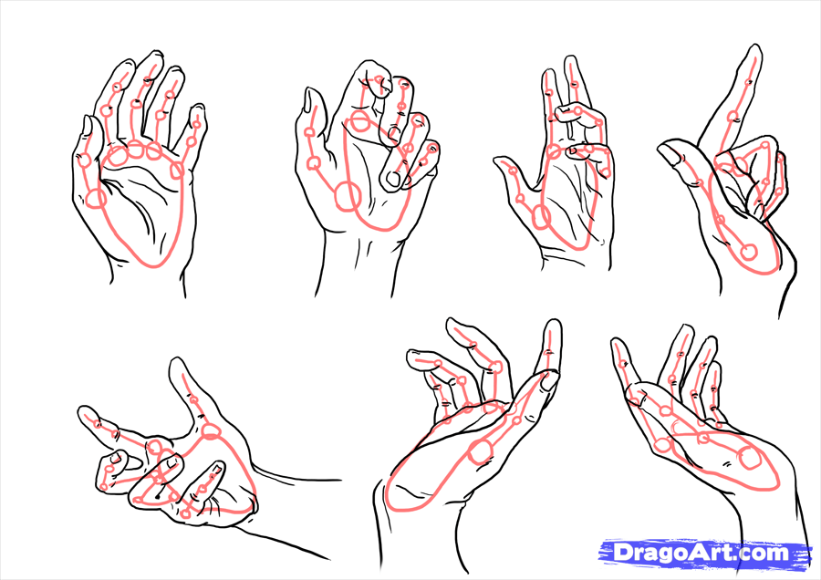 Step 9 and now the last part of the hand drawing is the poses it will be three part because you can draw a lot of hand pose firstly here some simple