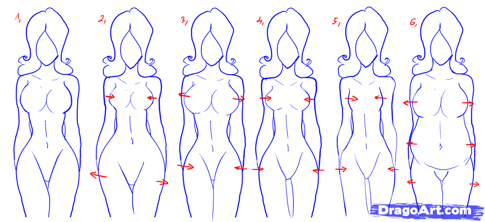 How To Draw Female Figures Draw Female Bodies Toons Mag