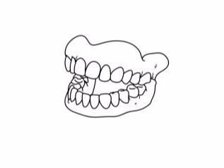 Home [toothstation.com]
