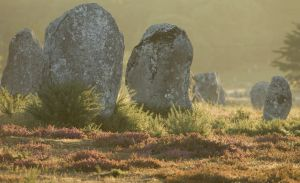 Stand in Line: Megalithic Alignments at Carnac.