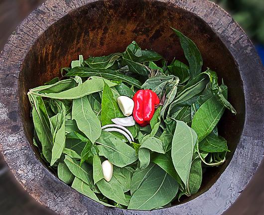 Le Mataba dans son pilon avec les feuilles de Manioc