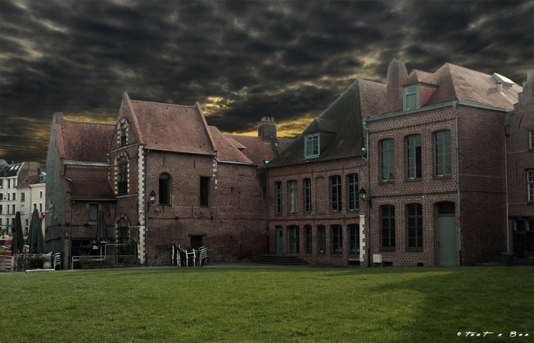 Maisons Lilloise dans un parc sous un soleil gris menacant