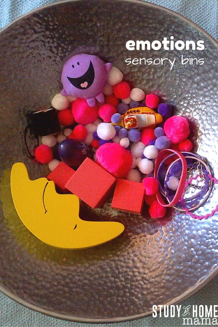 Emotions Sensory Bins