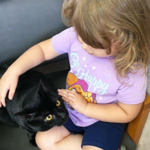 preschooler comforting a cat