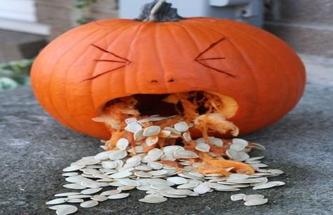Top 10 Health Benefits From Pumpkin Seeds