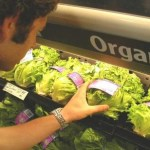 Top 10 Best Organic Foods You Should Buy