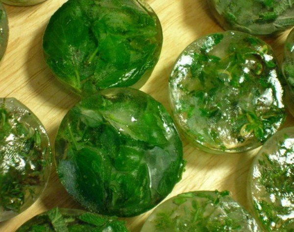 Herbal Ice Cubes