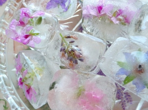 Fresh Flower & Herbs Ice Cubes