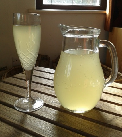 Homemade Meadowsweet Champagne