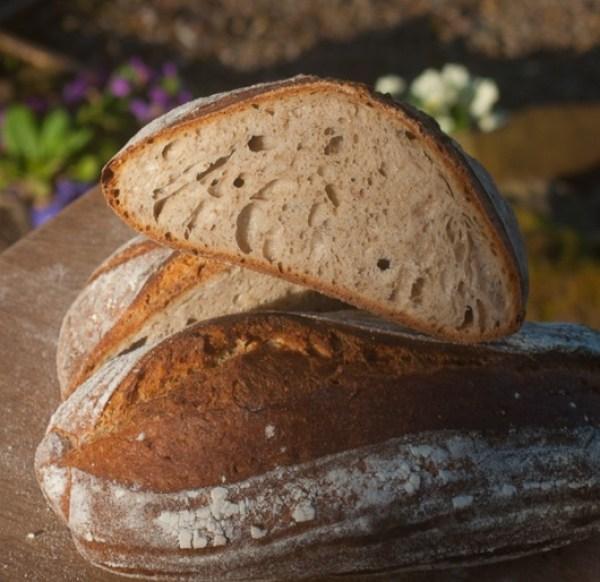 Kombucha Sourdough Bread