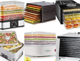 Ten of the Very Best Fruit Dehydrators You Can Buy Right Now