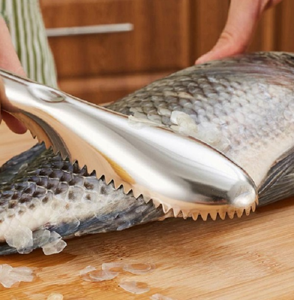 Stainless Steel Fish Skin Scraper