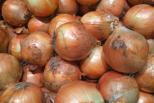 Ten Amazing Facts About Onions You Won't Believe Are Real