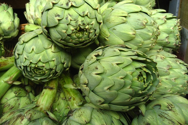Is Artichokes Known to Reduce the Risk of Cancer?