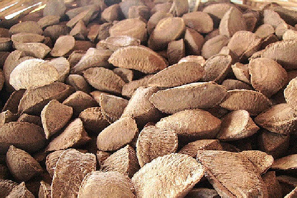 Are Brazil Nuts Good For The Skin?