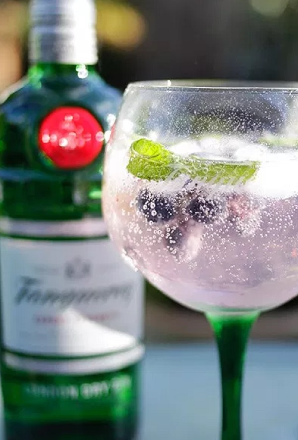 Blueberry Gin and Tonic