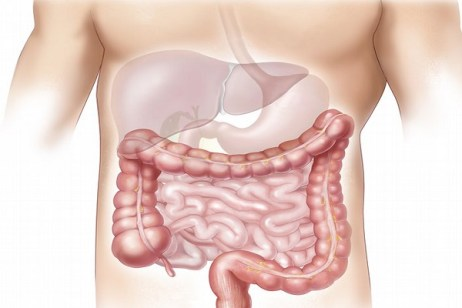 Ten Food and Drinks That Are Known to Help Cure Digestive Conditions