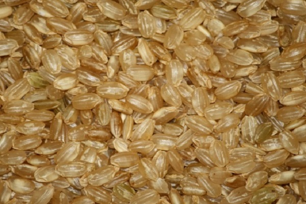 Can Brown Rice Make You Stronger?