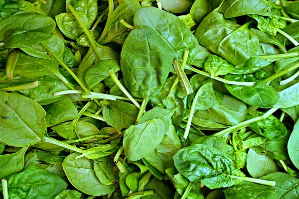 Does Spinach Have Long-Term Health Benefits?