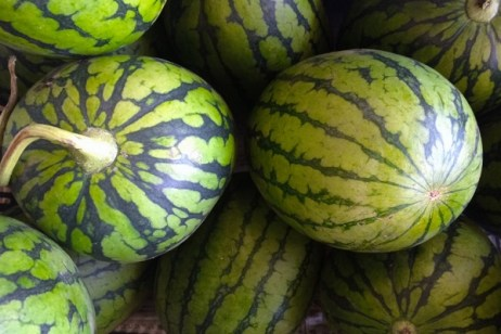 Ten Amazing Facts About Watermelon You Won't Believe Are Real