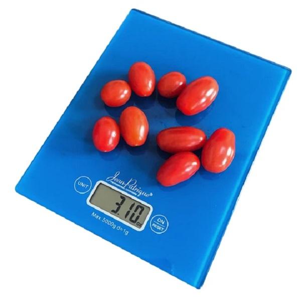 Jean Patrique Digital Kitchen Food Scales