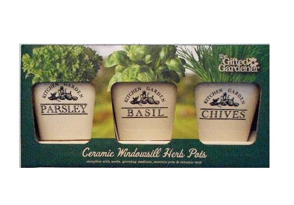 The Gifted Gardener Indoor Herb Garden