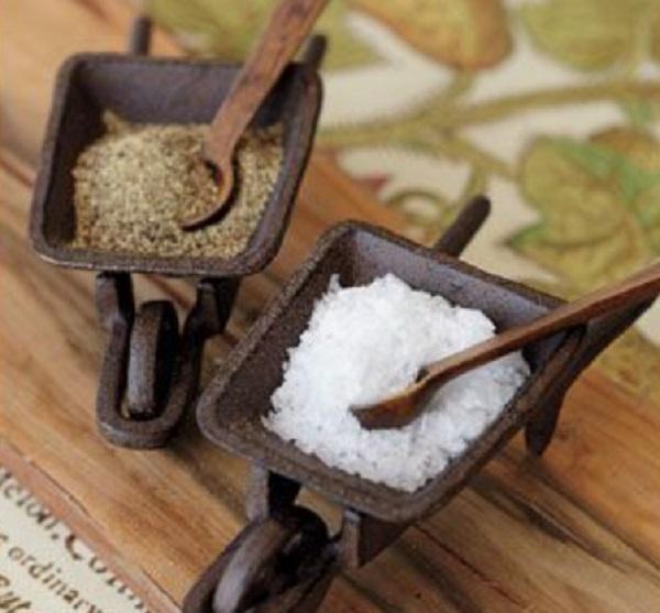 Pottery Barn Salt and Pepper Wheelbarrows