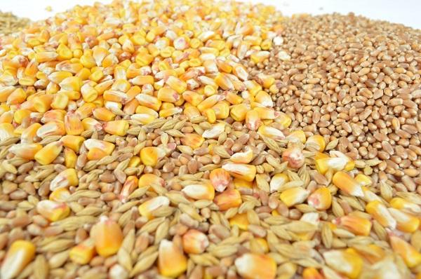 8. Whole Grains