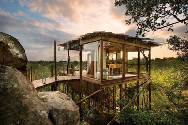 Lion Sands Ivory Lodge And Treehouse Resort: Lion Sands National Park, South Africa