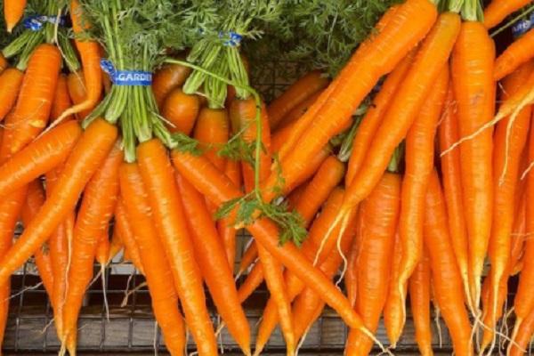 Carrots - 16,706 IU Per 100 Grams