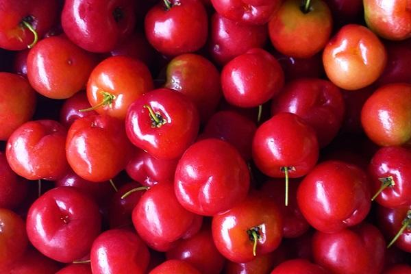 Acerola Cherries