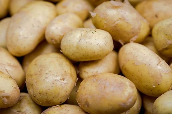 Potato (19.7 mg - per 100 Grams)