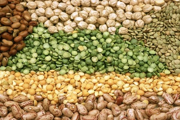 Legumes (49 mg – per 100 Grams)